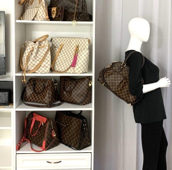 Louis Vuitton Damier Ebene Trevi PM